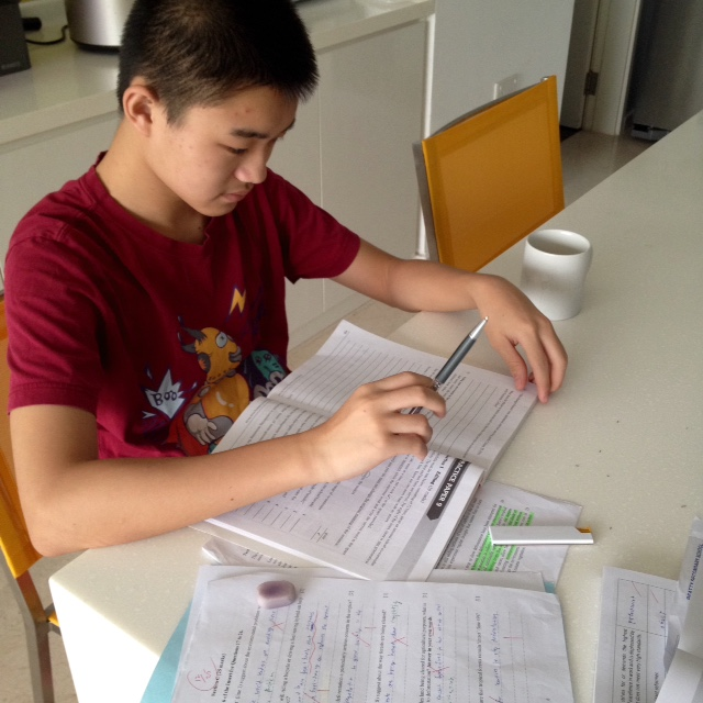 What areas in Math and English are in demand for tutors?